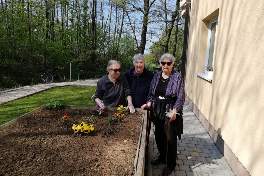 Proljetno uređenje vrta